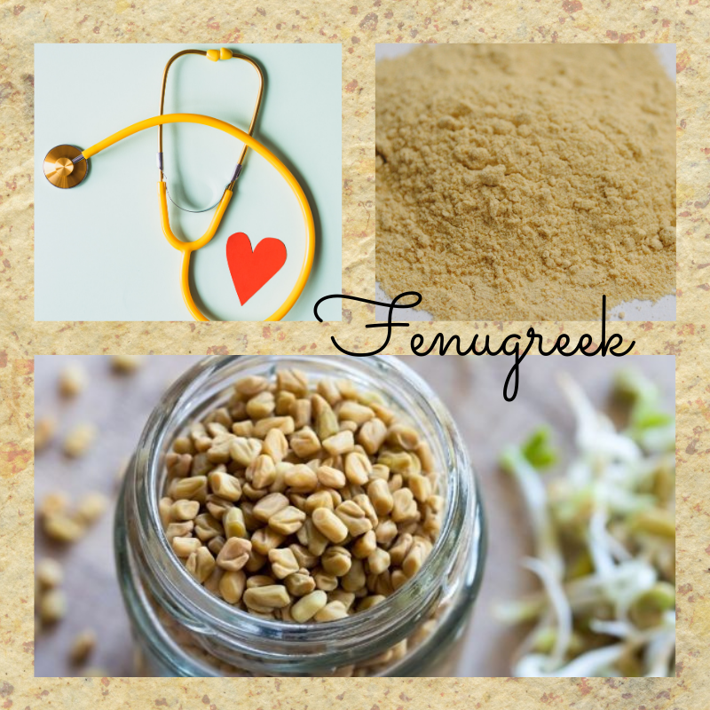 fenugreek-uses-and-benefits